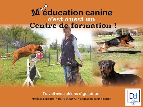 M'éducation canine : c'est aussi un centre de formations !