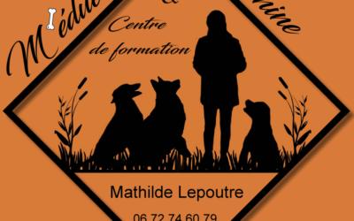 M'éducation canine : c'est aussi un centre de formation !