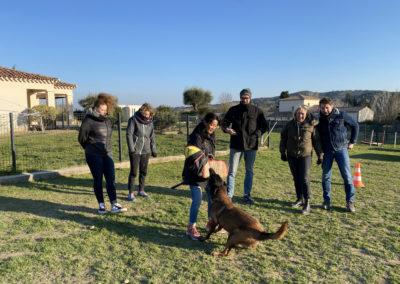 Mordant avec les stagiaires encadré par l'éducatrice canin